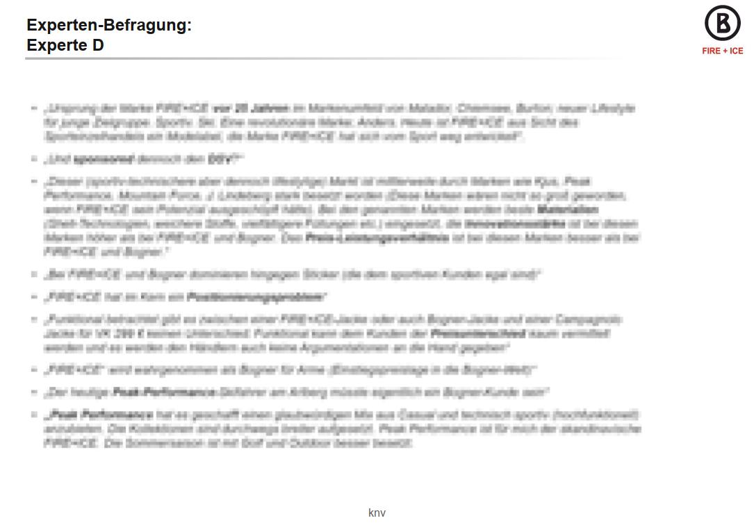 bogner_fire-ice_expertenbefragung